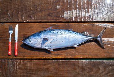 Mi. 26.2.2020 Fischessen